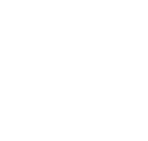 2020 Inside Public Accounting Top 300 Firms